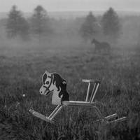 Horses by Kleemass