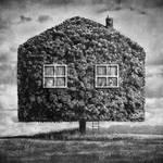 Dom by Kleemass