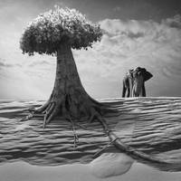 Elephantree by Kleemass