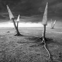 Sawland by Kleemass