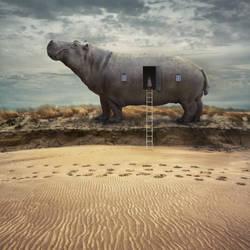 Hippodrome by Kleemass