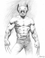 Wolverine commission 2014 by PaulAbrams
