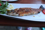 Fish by abaq