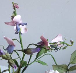 Cold Porcelain Sweet Pea by FifiCake