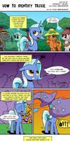 How To Identify Trixie by Pony-Berserker
