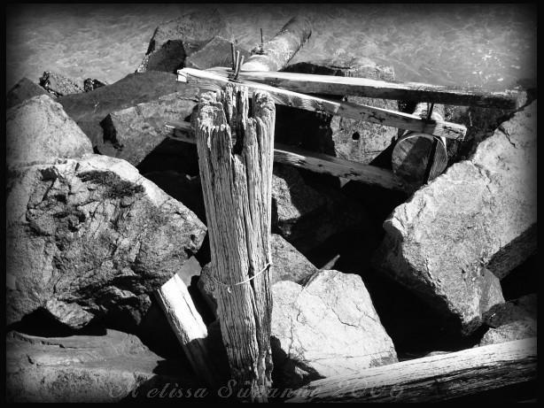 Old Pilings by jerseybrat