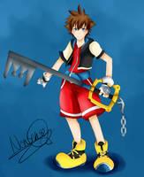 Sora Kingdom Hearts by TheLadyNonsense