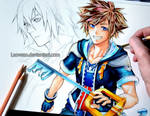 Kingdom Hearts II - Sora and Riku (WIP) by Laovaan