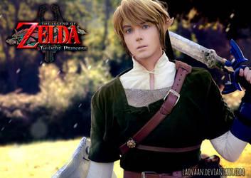 Link - Legend of Zelda: Twilight Princess by Laovaan