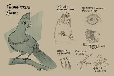 Bird Sketch by Archi007