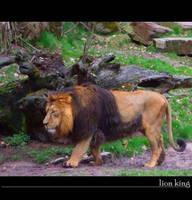 lion king by ArtFreakThea
