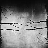 Trespass by anaPhenix
