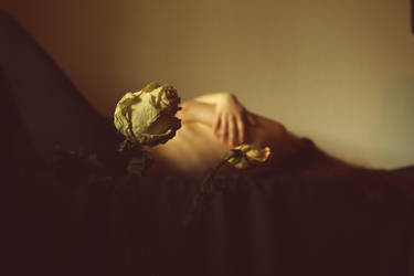 Still (a) - life by anaPhenix