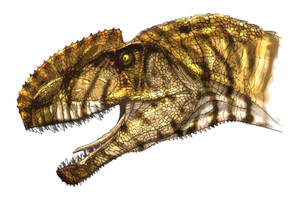 Monolophosaurus by Fafnirx