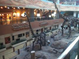 Changji Dinosaur museum by Fafnirx