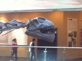 Klamelisaurus head by Fafnirx