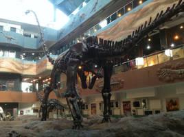 Mamenchisaurus sinocanadorum by Fafnirx