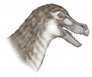 Velociraptor by Fafnirx