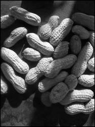 Peanuts by heystranger