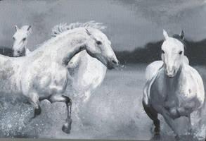 Horses by Velbette