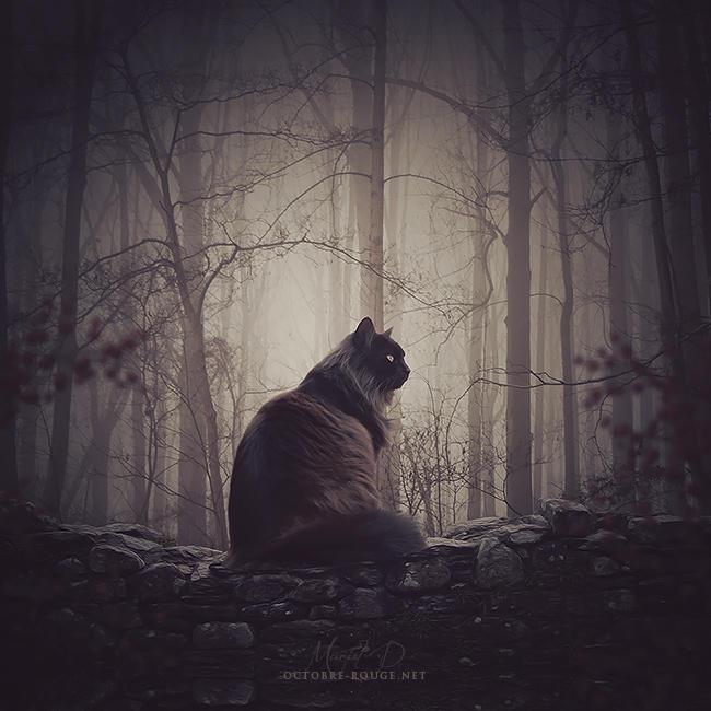 Le Guetteur Silencieux by octobre-rouge