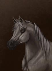 Arabian by DarkMoon17