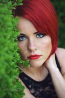 Hedge 1 by Estelle-Photographie