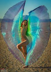 Desert Wings by Mac--Photo