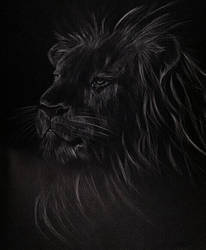 The blacks. by nightwish5871