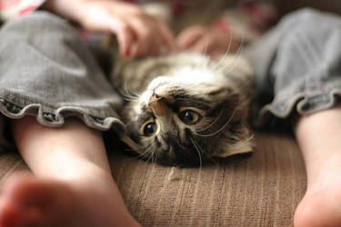 Ropey Upside Down Snuggles by DreamEyce