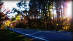 fall roads by Foreigner227
