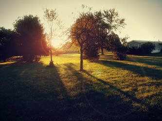 sunny morning 17 by Foreigner227