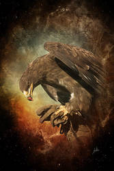 steppenadler by greenfeed