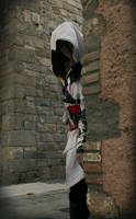 Assassin by Evinyakwende