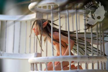 Caged male faerie by AlvaroFuegoFatuo
