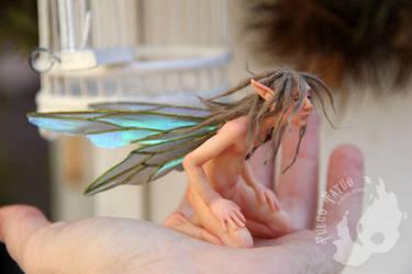 Male faerie by AlvaroFuegoFatuo