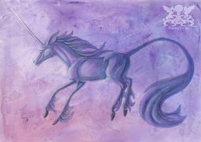 Fuchsia by Penny-Dragon