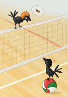 Haikyuu by Penny-Dragon