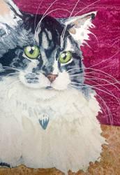 Julia's Tabby  White by OdderByArt
