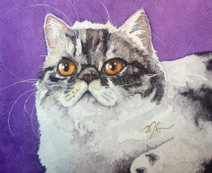 Gretchen's Grand Cat#1 by OdderByArt