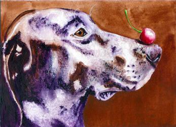 Cherry Blue Dog by OdderByArt