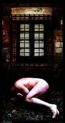 Isolation by MercuryShadow