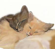 pets by psycopix