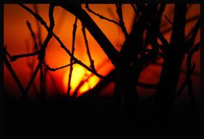 Sunkeeper by psilocybica