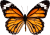 Butterfly icon.4 by RedqueenAllison