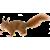 Squirrel icon.7
