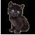 Kitten icon.4