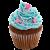 Cupcake icon.5