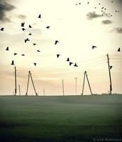 Let me fly like a bird by iilva