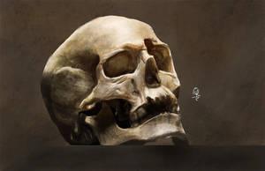 skull by gabfig